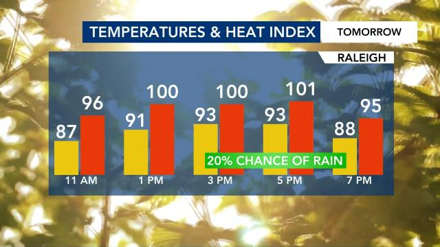 Heat index and temperatures for July 29