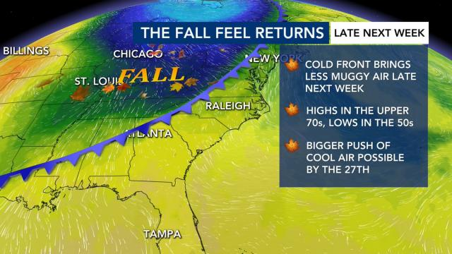 WRAL Weather Feed: Kat Campbell