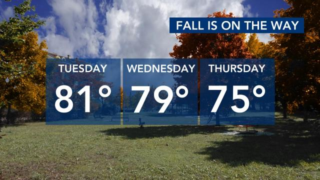 Fall temperatures for the next 3 days