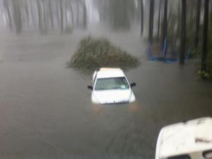 Vandamere, Hurricane Irene