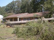 An uprooted tree outside Matt Ashley's home at the corner of Sherwood Avenue and South Deluca Road in Goldsboro.