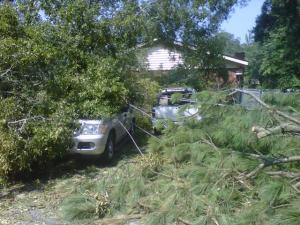 Fallen trees on cars belinging to Matt Ashley and his wife in their Goldsboro neighborhood.