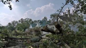 Hurricane Irene toppled stately, century-old oaks in shady, historic neighborhoods in the Pitt County town of Ayden on Saturday, Aug. 27, 2011.