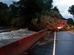 A tree blocks Riley Hill Road in Wake Forest as water rises up to street level Monday night.