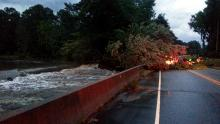 Wake Forest high water, downed tree