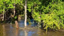 Hurricane Matthew Flooding (Oct. 10, 2016)