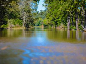 Areas around Leggett in Edgecombe County were flooded to the point access to Leggett was completely cut off on Tuesday, Oct. 11, 2016. The flooding is from the Tar River after Hurricane Matthew. (Photo By: Nick Stevens/WRAL)