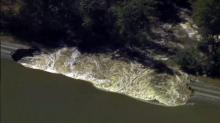 IMAGE: Environmentalists fear coal ash spills from flooding