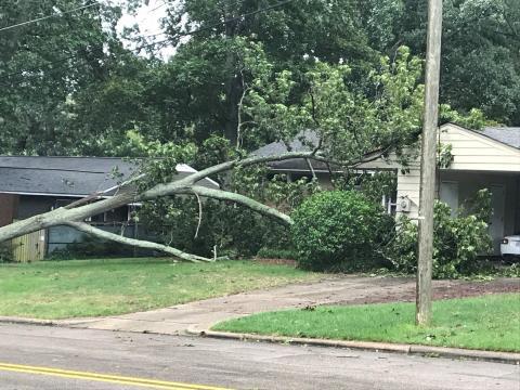 Cameron Village Hurricane Florence damage