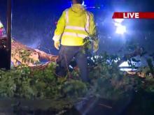 Large tree blocks Lead Mine Road in north Raleigh