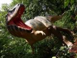 Dinosaur Trail Screensaver