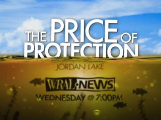 The Price of Protection