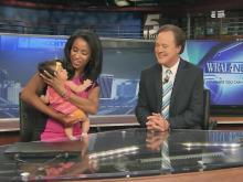 WRAL Babysitters: Elsa makes TV debut