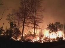 Wildfires in western N.C. force families from homes