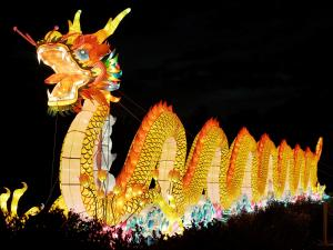 The North Carolina Chinese Lantern Festival is back at Koka Booth Amphitheater in Cary. With 20 new displays, the festival runs through Jan. 15.