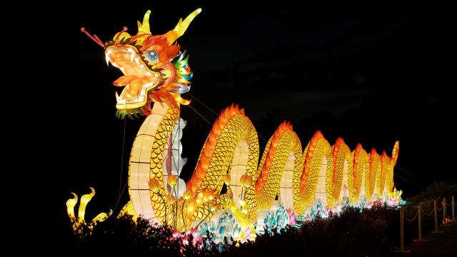 north carolina chinese lantern festival 2016