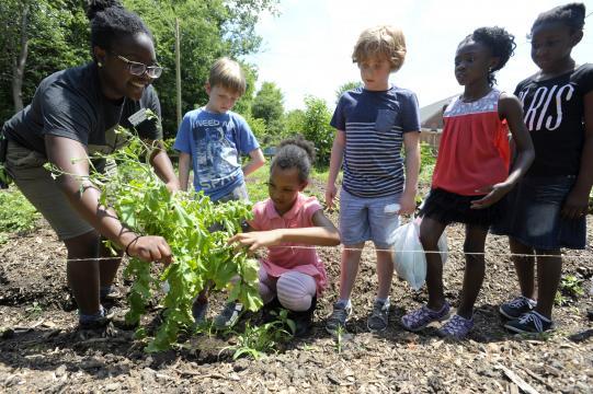 Inter-faith Food Shuttle Camden Learning Garden
